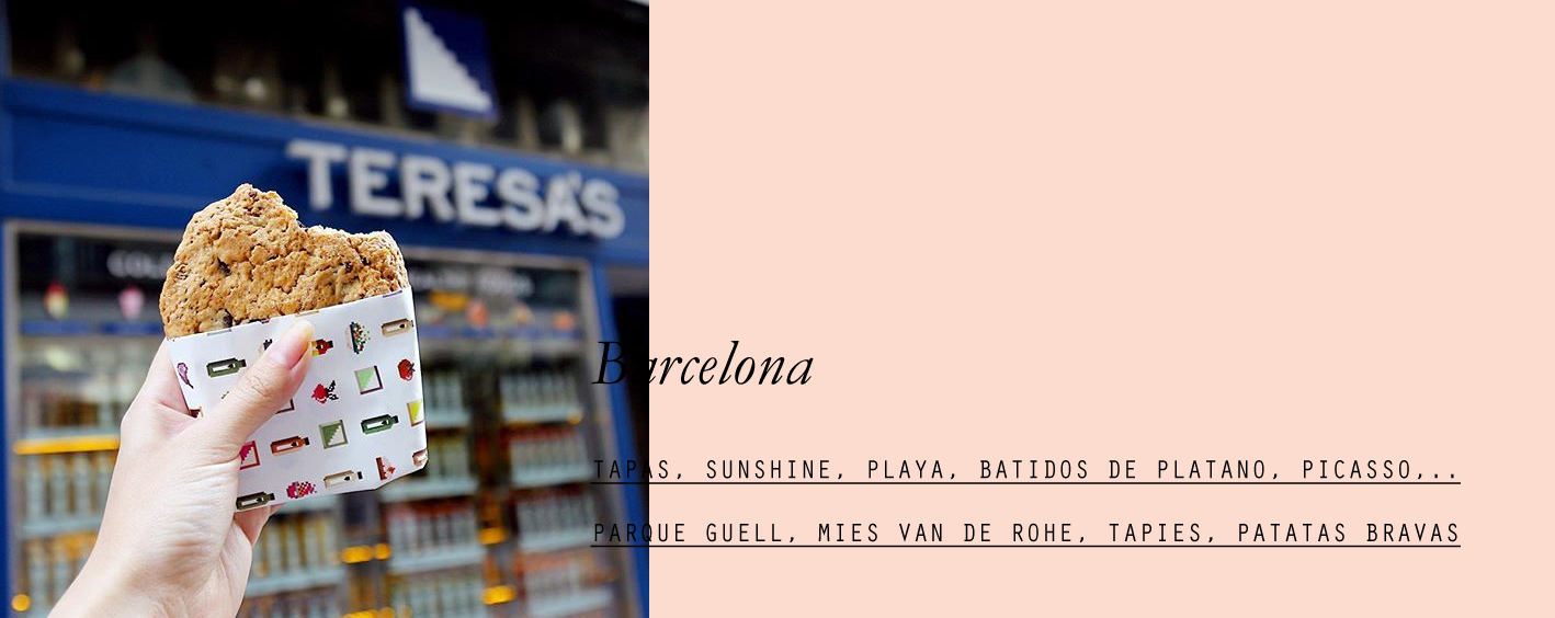 barcelona-lespetitespestes-06.jpg