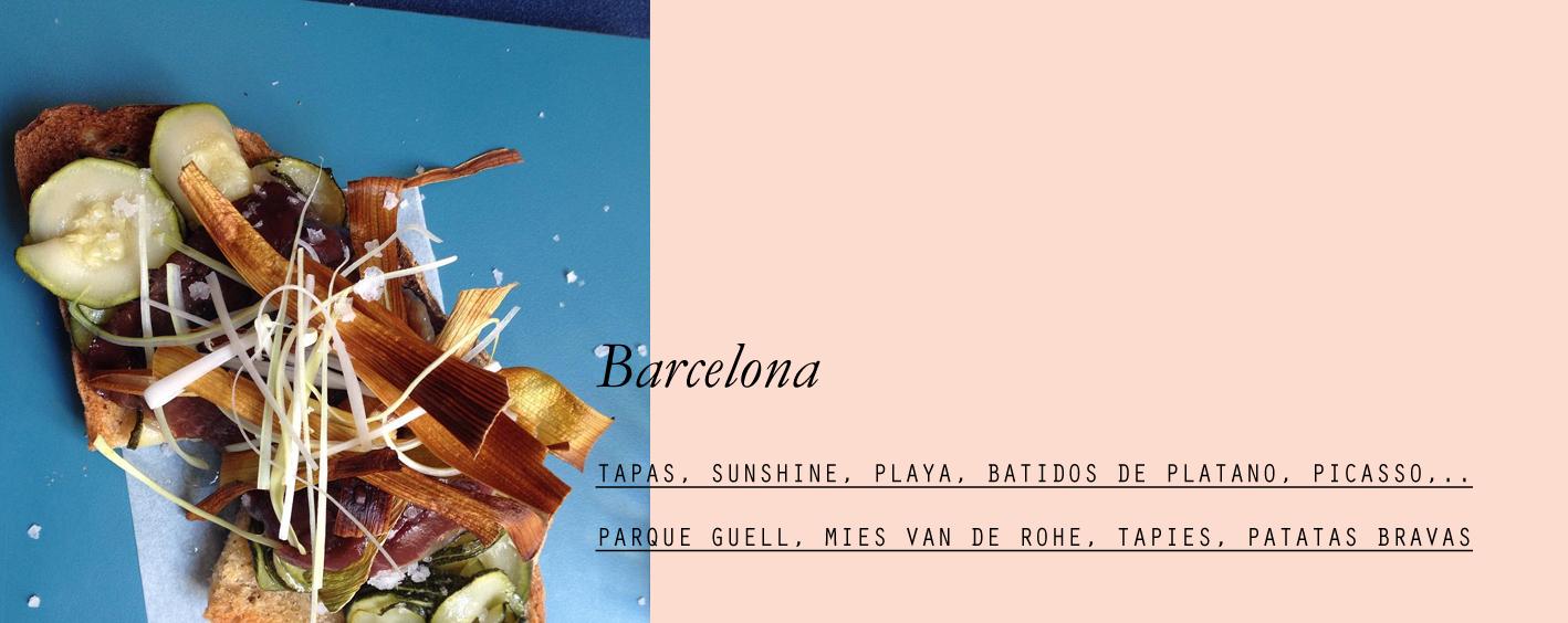 barcelona-lespetitespestes-08.jpg