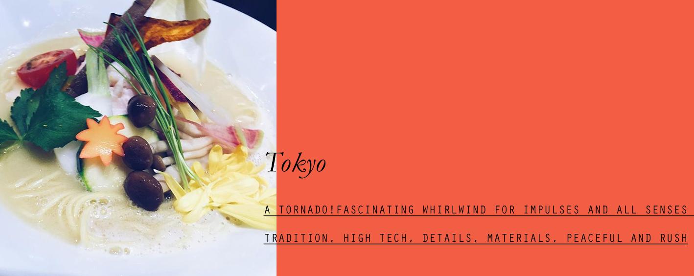 tokyo-lppcityguidetotokyo-lppcityguide-lespetitespestes-06.jpg