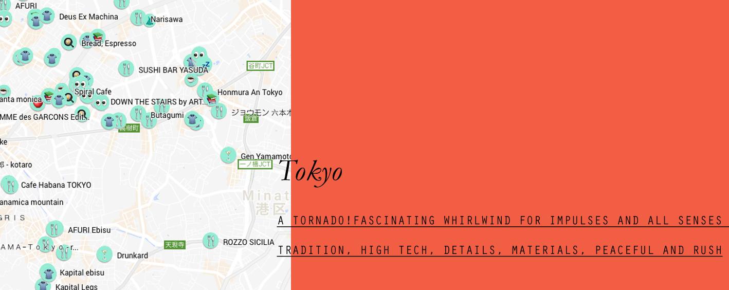 tokyo-lppcityguidetotokyo-lppcityguide-lespetitespestes-07.jpg