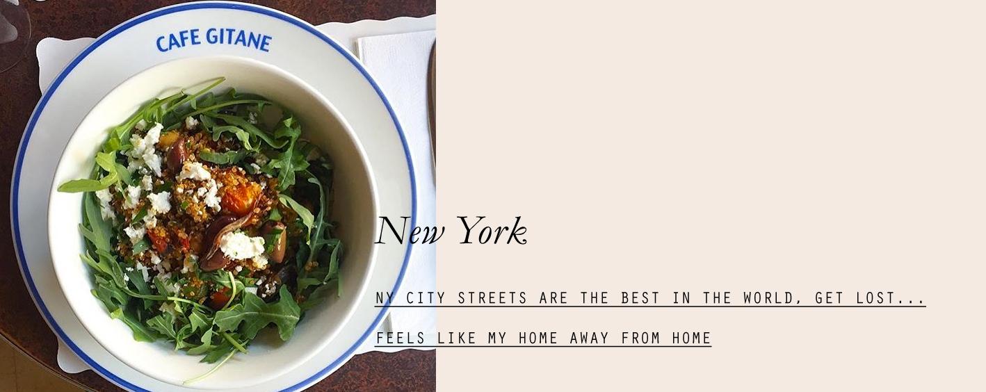 newyork-lespetitespestes-09.jpg