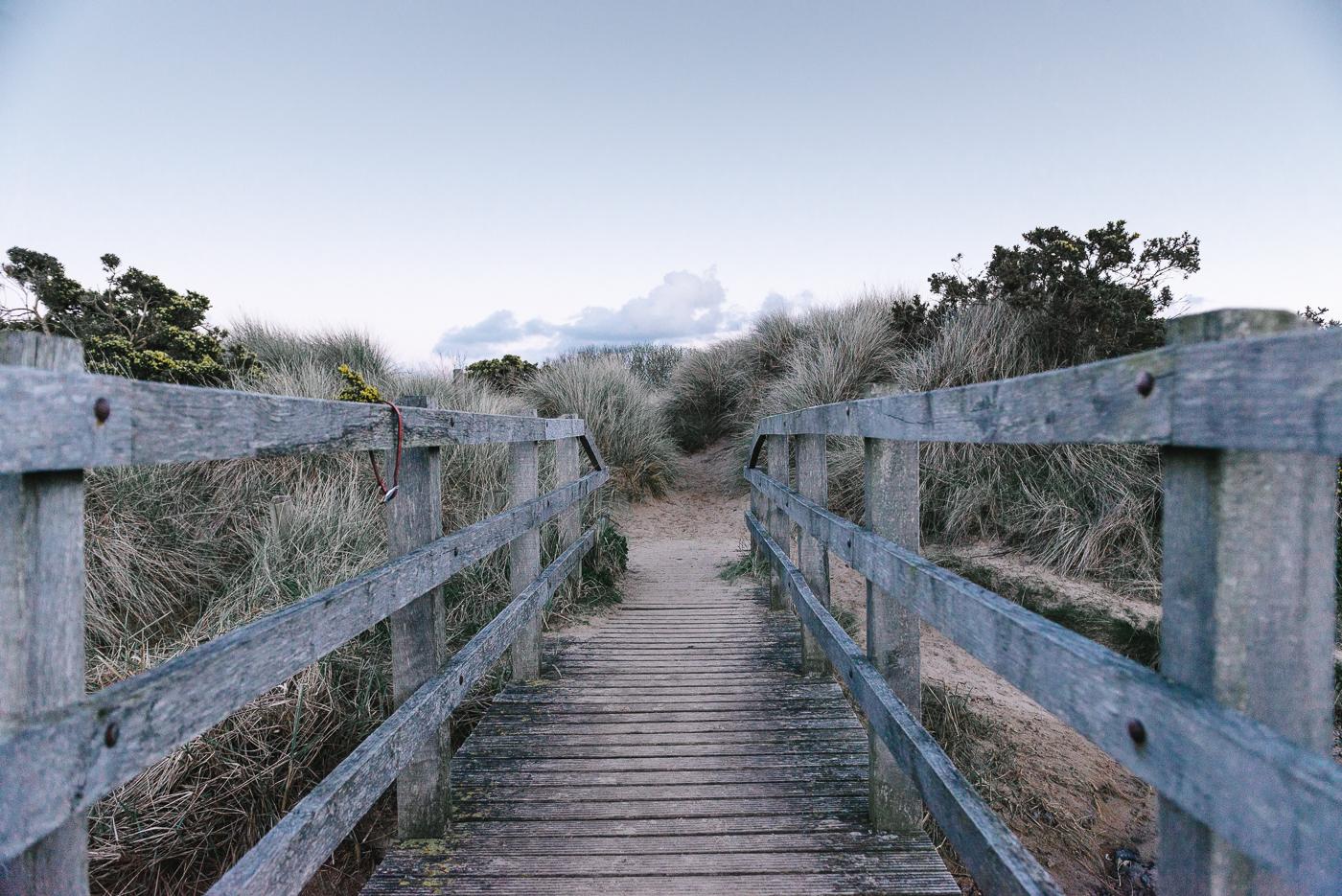 Landscapes-2388.jpg