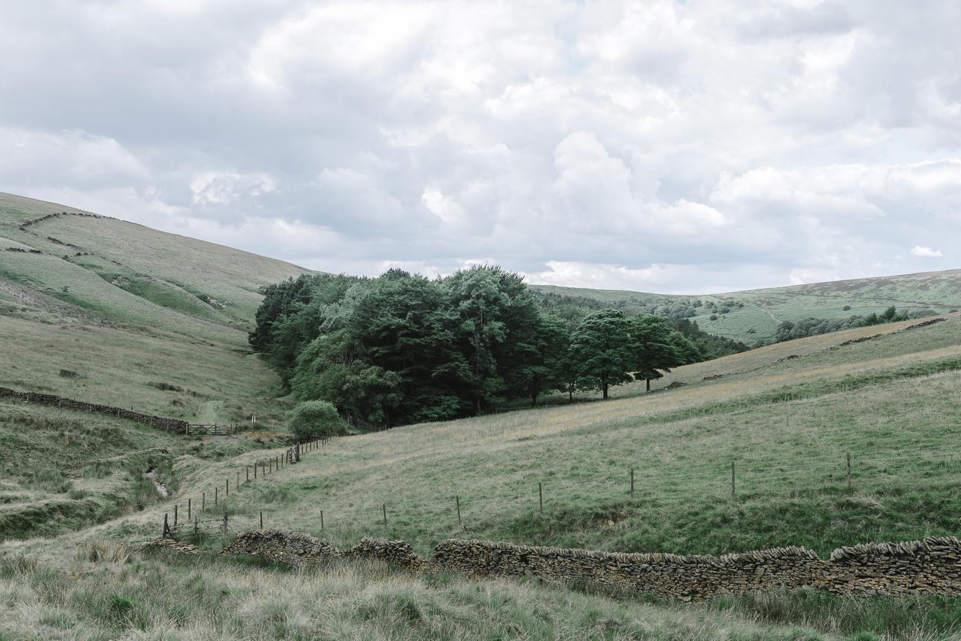 Landscapes-4525.jpg