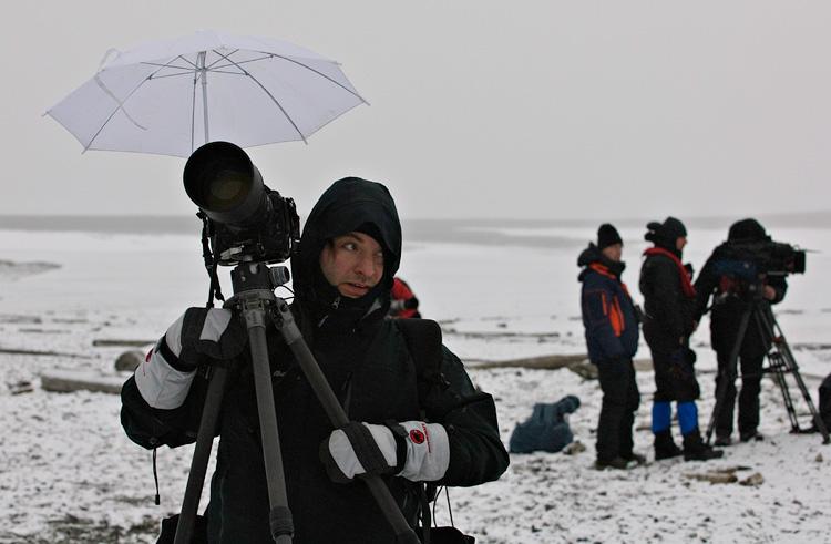 Svalbard (2009) • © Anne Bauer