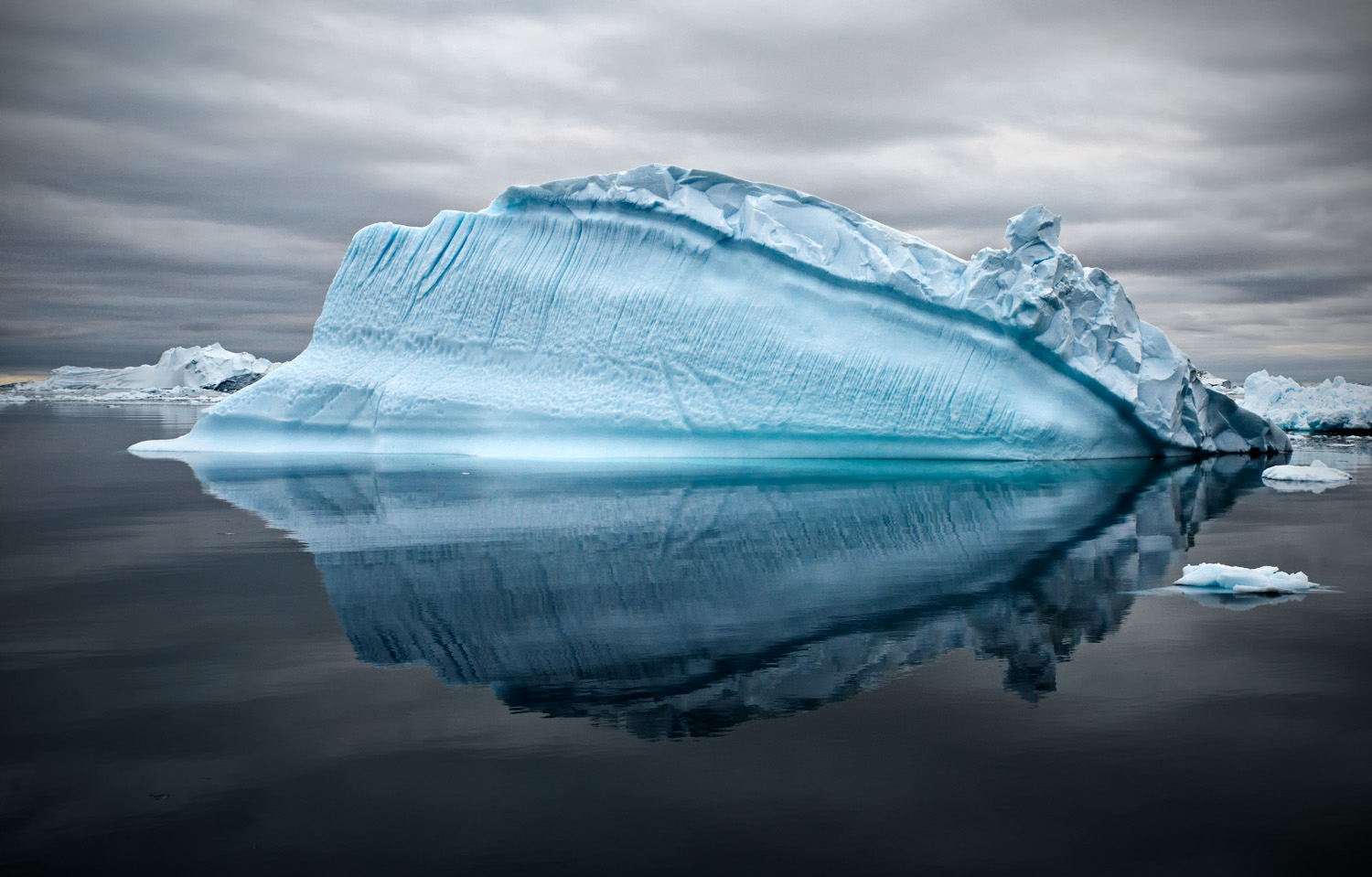 Bowhead Whale Of Ice