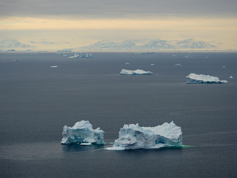 Icebergs In Pastel