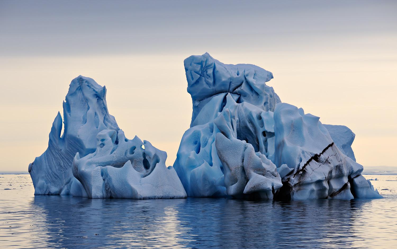 Study / Iceberg