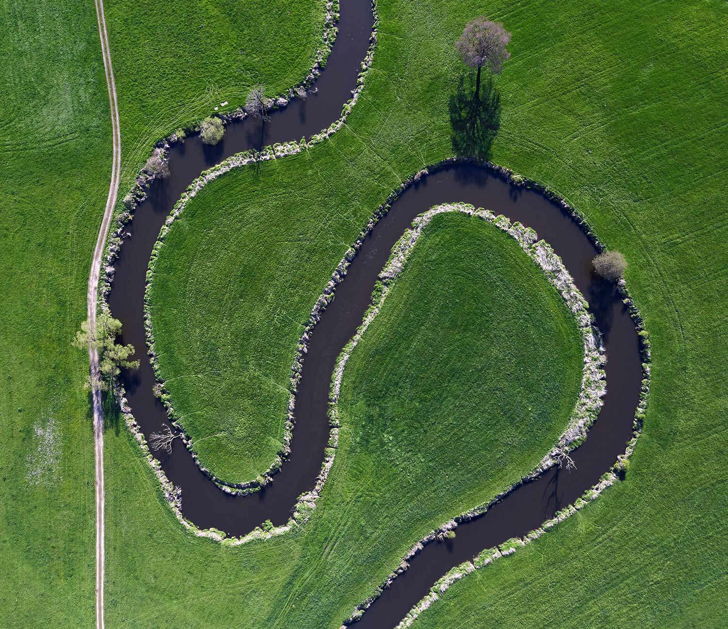 In Central Europe there are only very few rivers left that are allowed to freely meander.