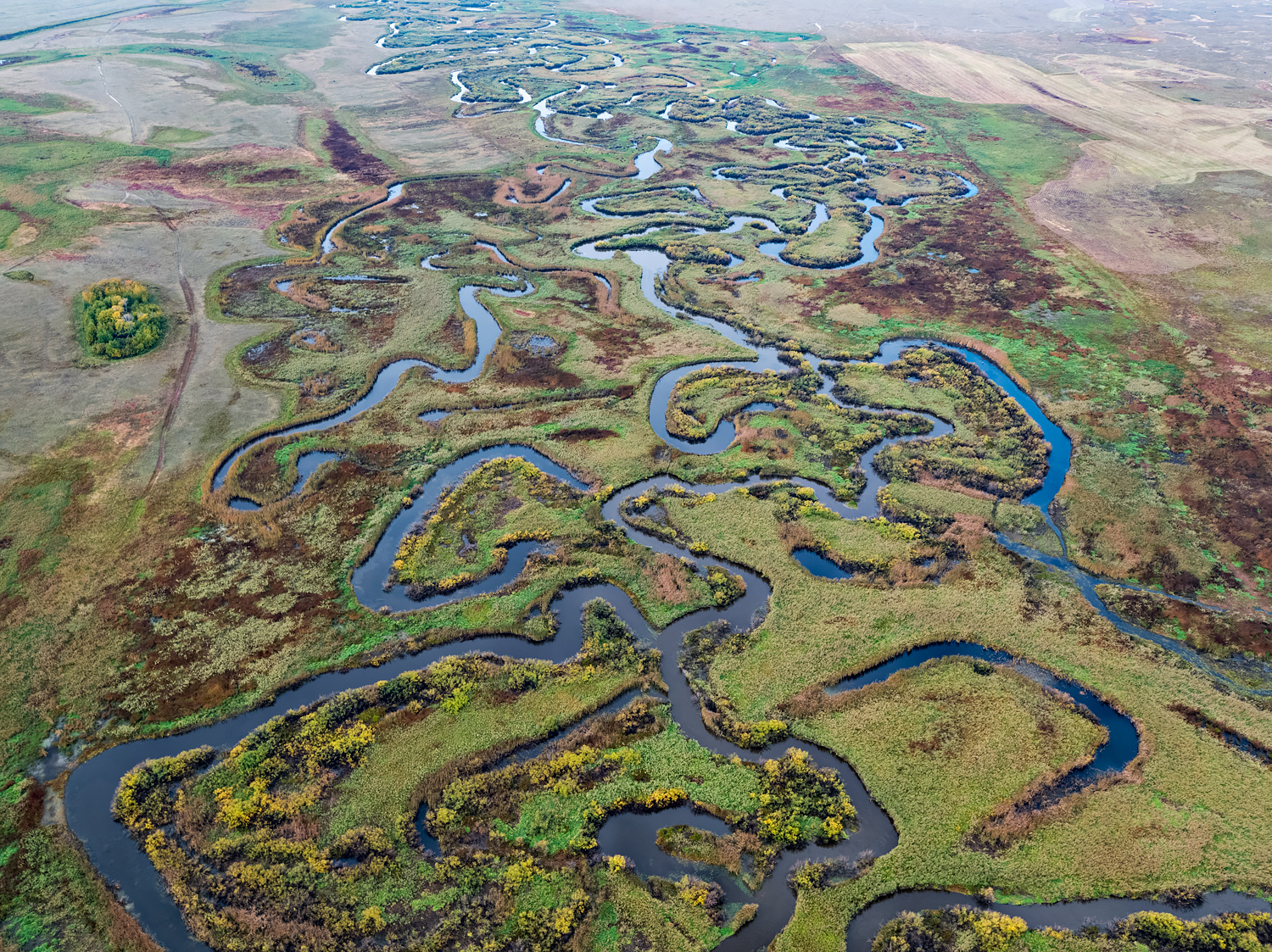 Siberia: where rivers are still free
