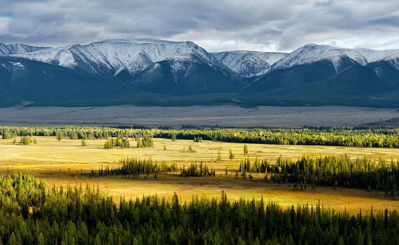 Radiant Steppe