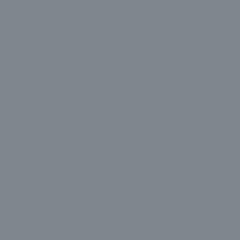 Sherwin Williams' Serious Gray SW6256
