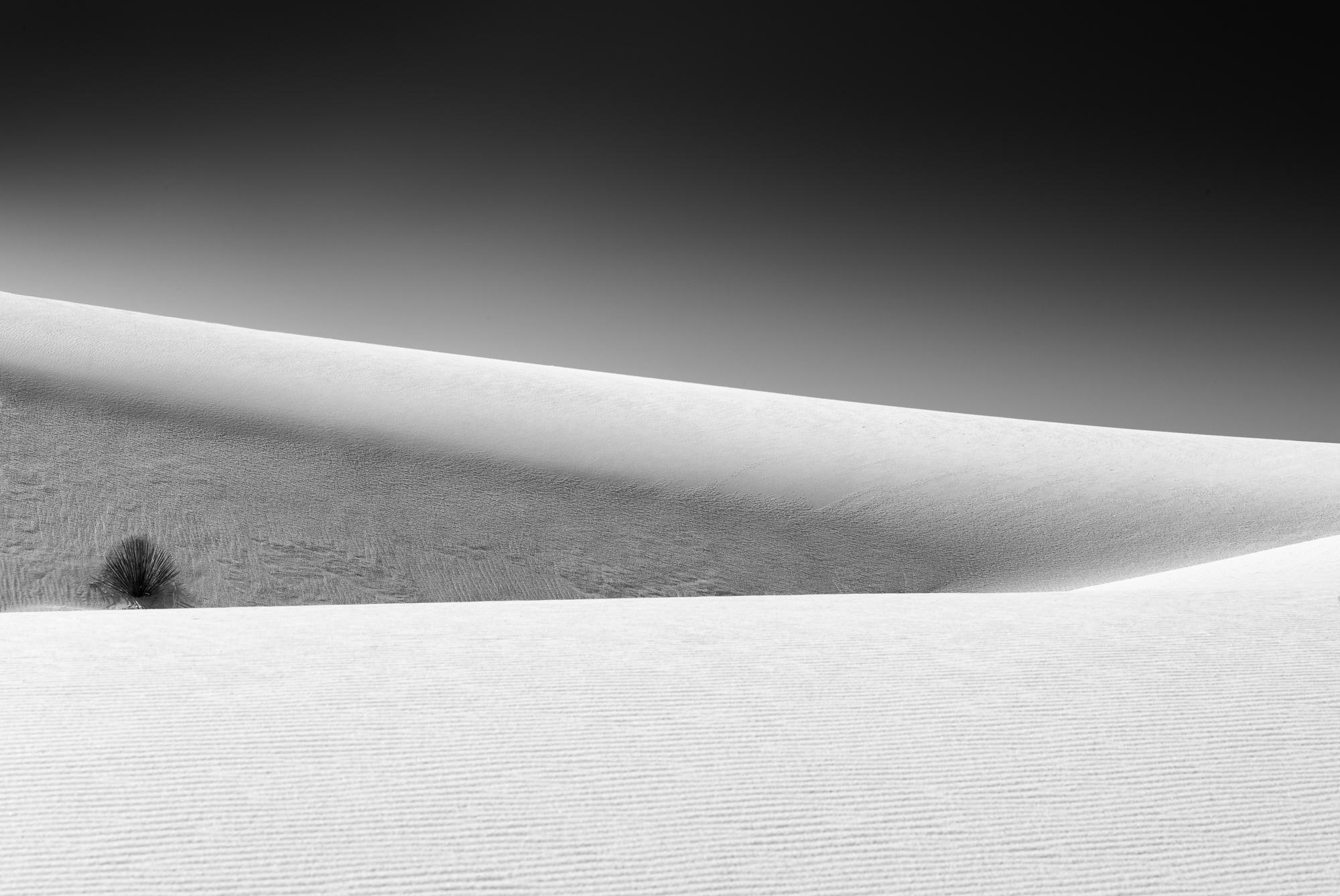 White-Sands0015-179.jpg