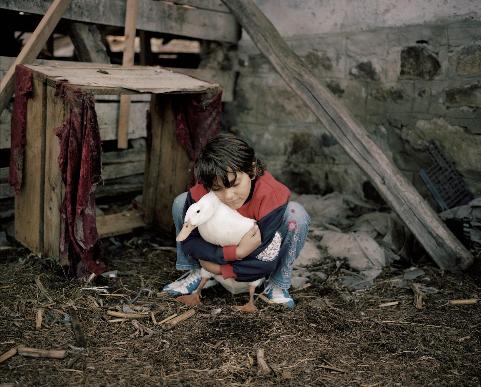 """Gyöngicke, 2013 extrait de la série """"Majd"""" en cours"""