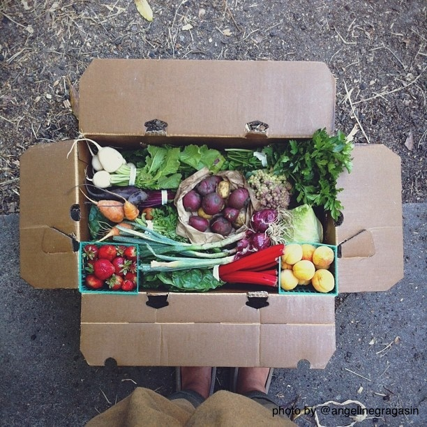 Member photo of an Eatwell Farmbox