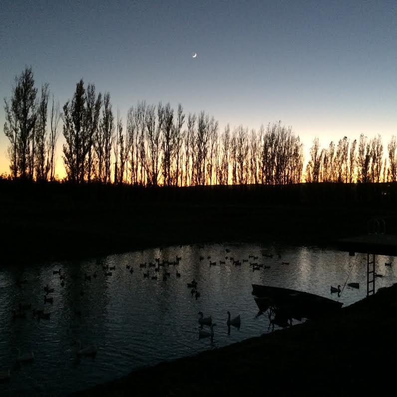 Dusk at Eatwell Farm - Winter 2014