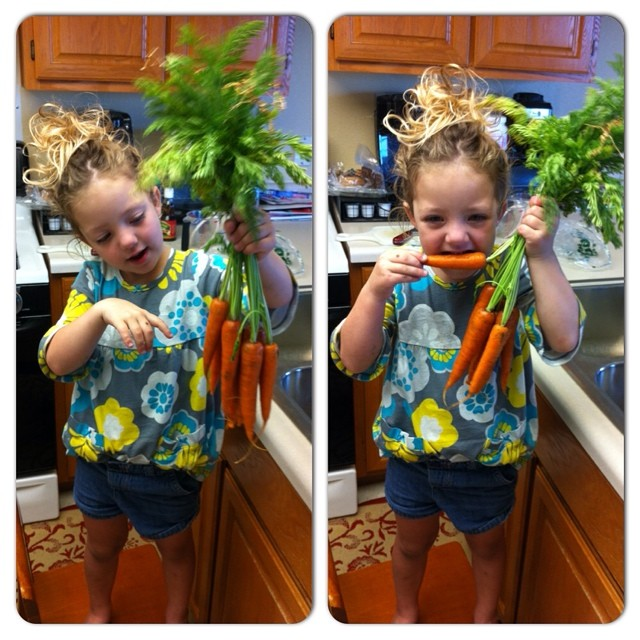 Emily's daughter, Evelyn, munches on Eatwell Farm carrots