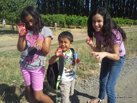 Sandy's daughter and cousins show off their berry stained fingers at an Eatwell Farm event.