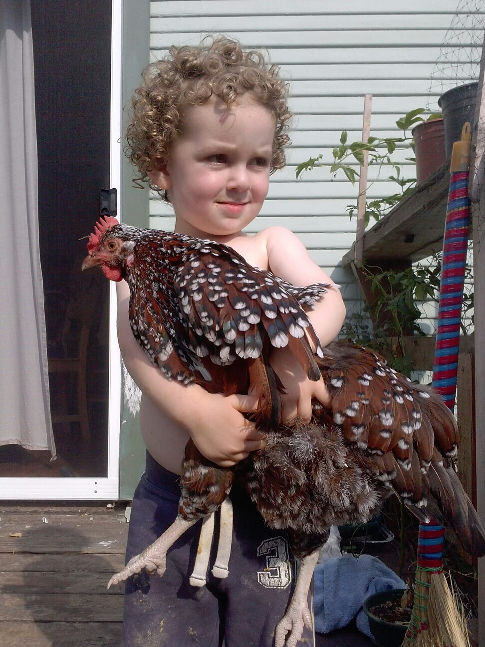 Carolyn's son, Lalo, with one of their chickens
