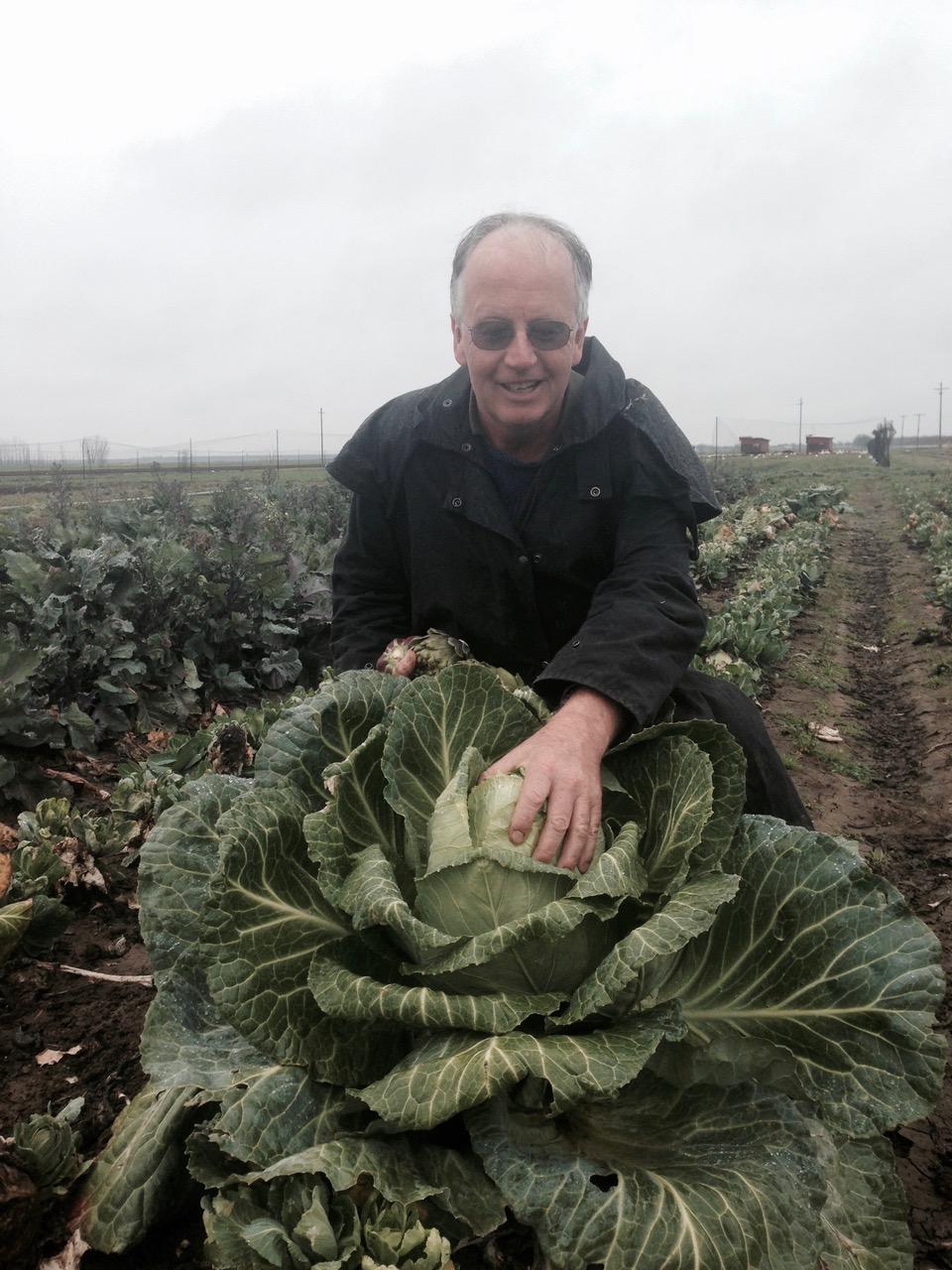 Nigel cabbage.jpeg
