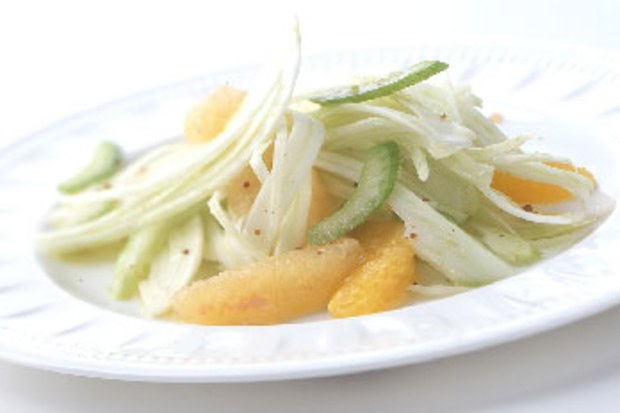 photo credit: https://www.epicurious.com/recipes/food/views/citrus-celery-and-shaved-fennel-salad-107403