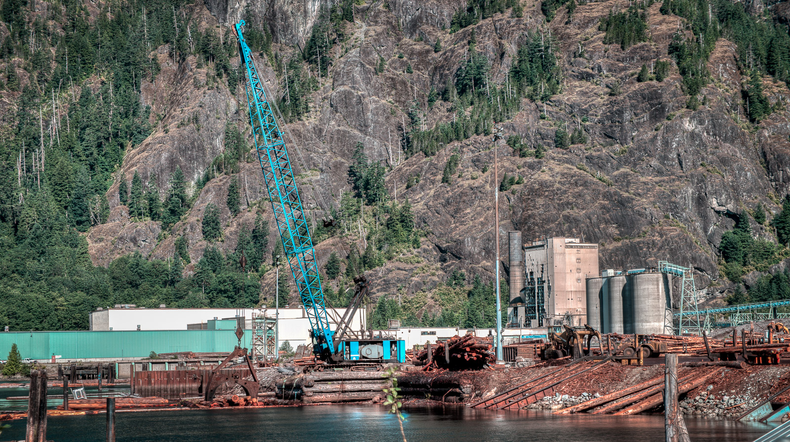 Here is the heart of business. A log sorting shoreline. Logs come in by trucks and by water. This giant crane scoops them up for processing. Some go to local mills but I expect that many are shipped to Asia. The next shot shows a vessel awaiting to do that. (I can't confirm that it is going to Asia; it could be going to a BC mill?)