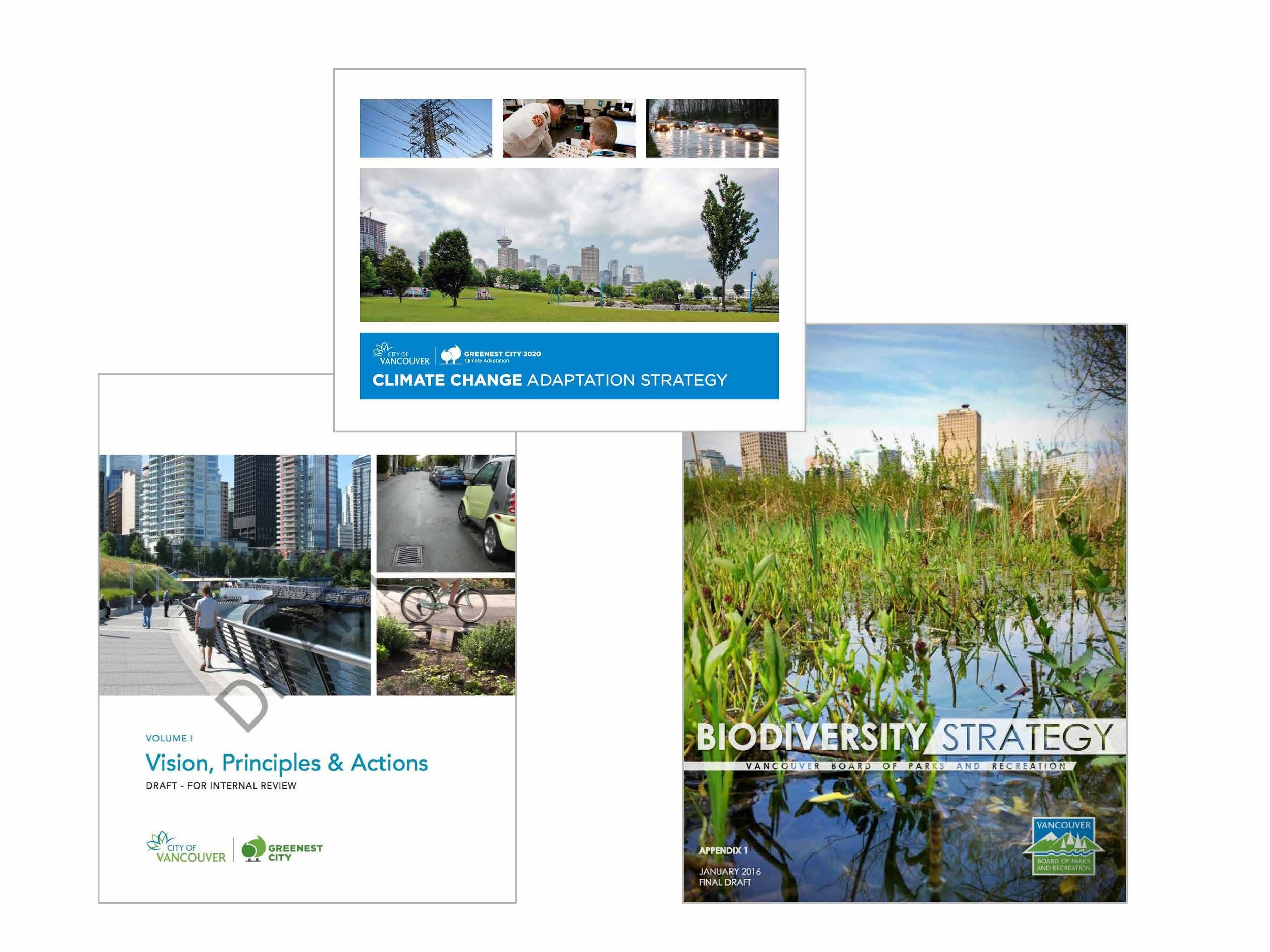 Until recently there hasn't been an overarching City policy to guide projects like the Rainway, however this might be changing with the IRMP, Climate change adaptation strategy, and Biodiversity Strategy
