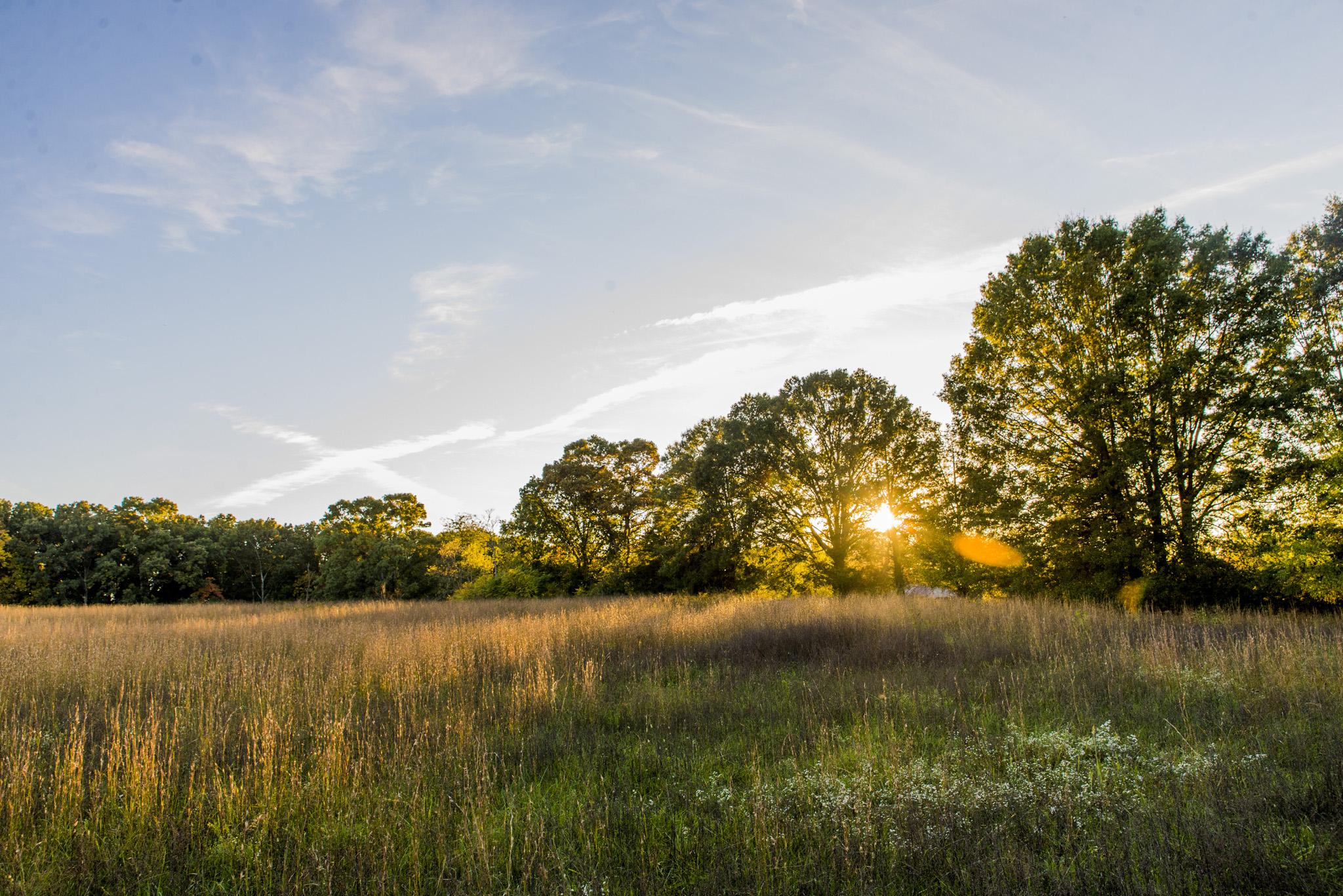 field_barn_engagement_session_sunset_golden_romantic_rustic_lynchburg_va035.jpg