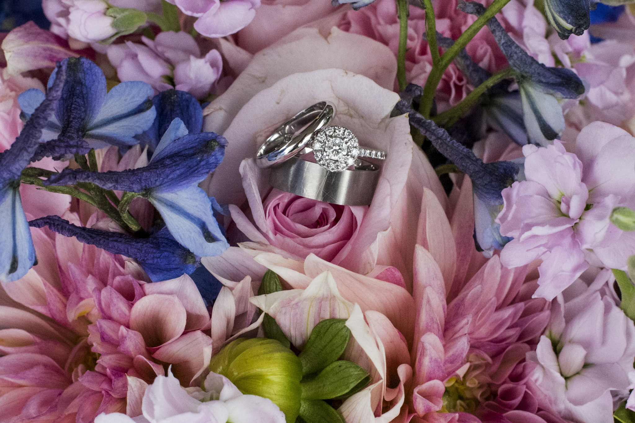 Boonsboro Country Club_Lynchburg VA_Forest VA_Wedding Photos2425.jpg