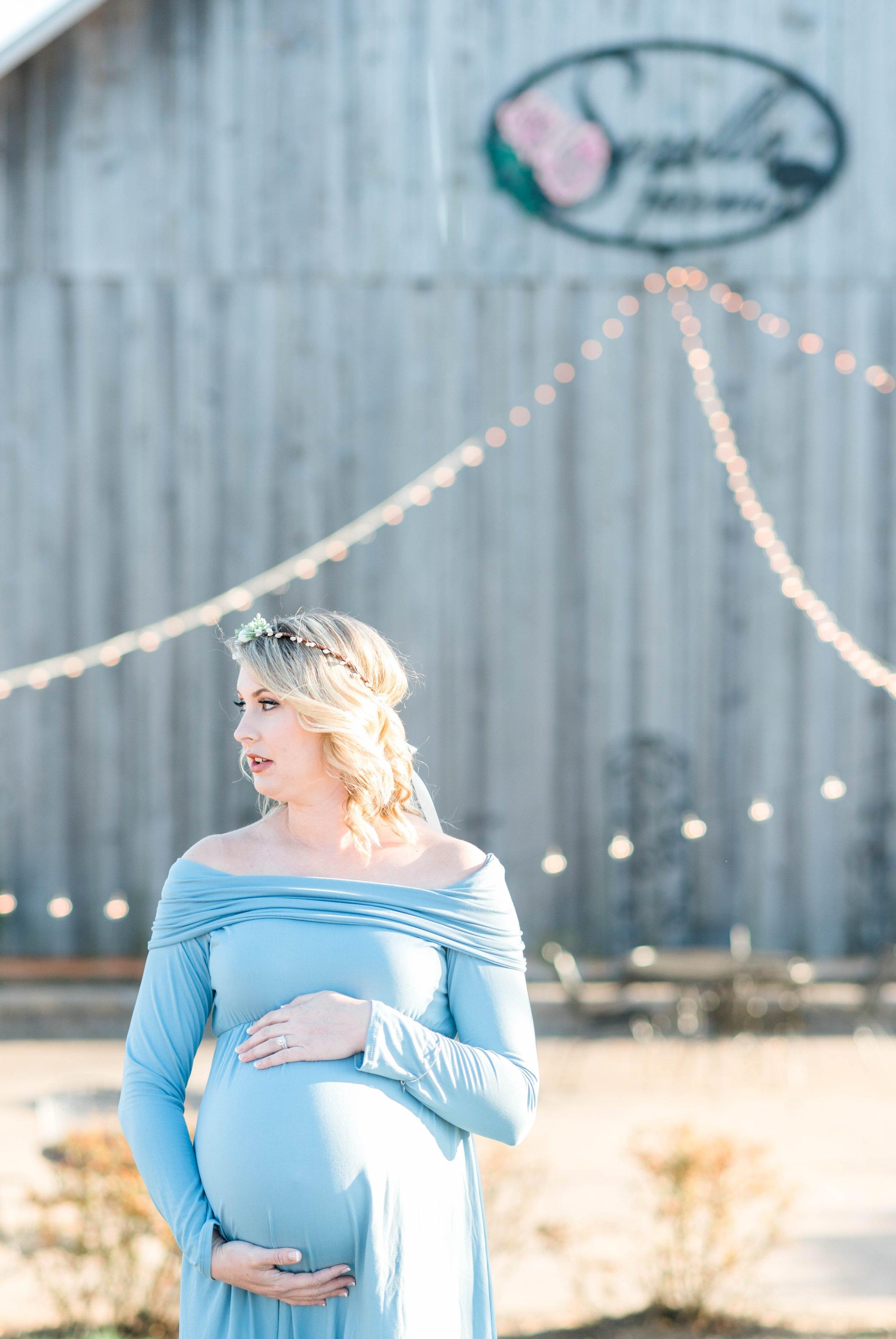 SorellaFarms_Jessica+Dylan_MaternitySession_Virginiaweddingphotographer 22.jpg
