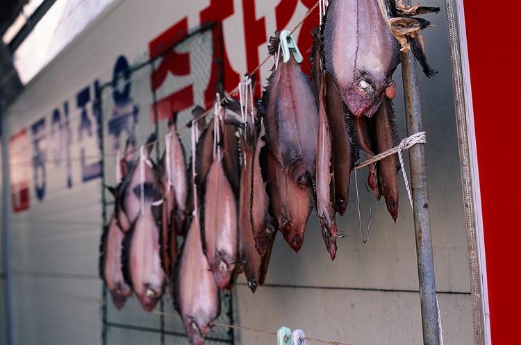 yeongdeok fish.jpg