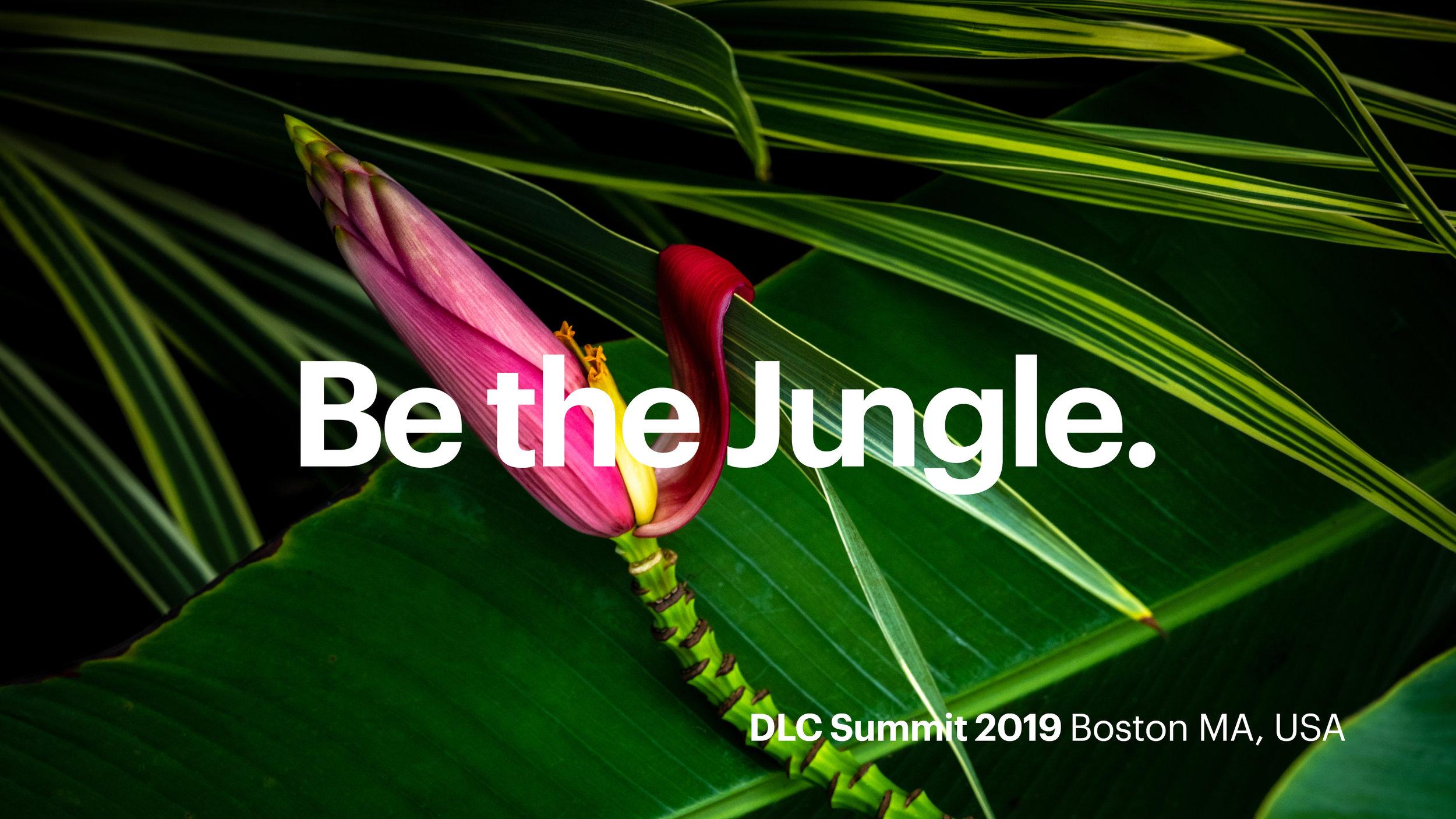 Jungle_HoldingSlides-v1_0407192.jpg