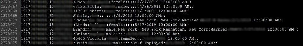 A sample of USA records showing the redacted mobile numbers starting with New York's 917 mobile area code. Image by BleepingComputer