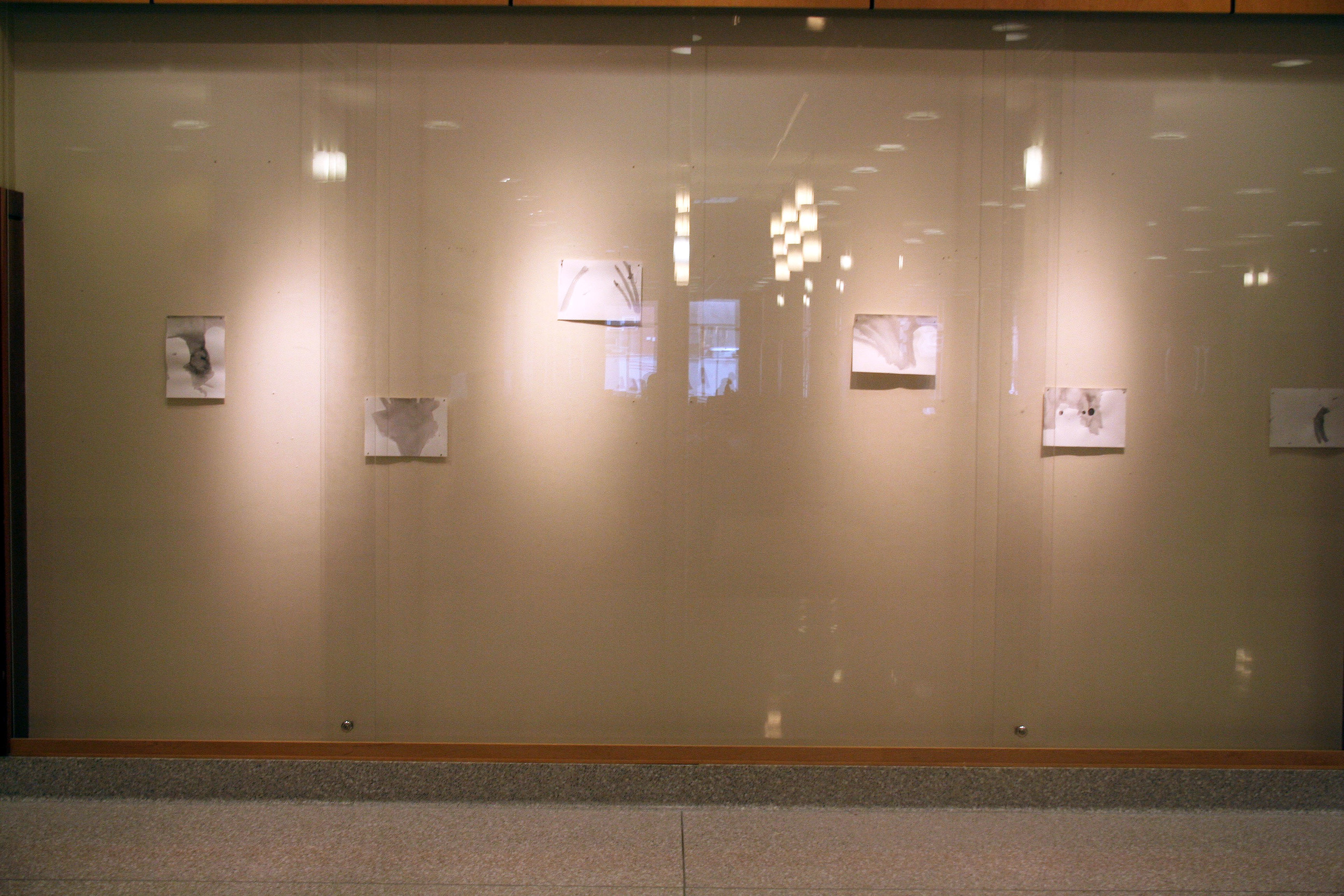 kendall gallery 12.jpg