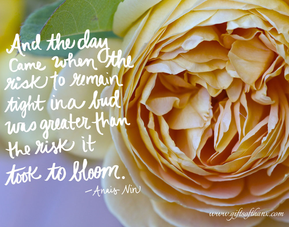 """And the day came when the risk to remain tight in a bud was greater than the risk it took to bloom.""  -- Anais Nin"
