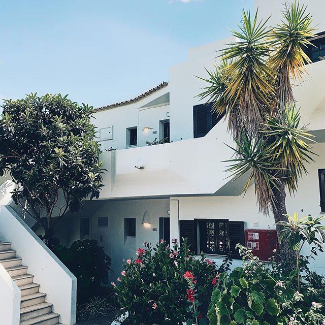Beautiful house in algarve  #postcardsfromtheworld #optoutside #solotravel #goexplore #wonderfulplaces #travelbug #wanderlust #momentsofmine #travelstories #roamtheplanet #traveltheworld  #instatravellin  #mytravelgram  #traveladdict #travel #portugal #algarve #photography #instatravel #traveling #travelgram
