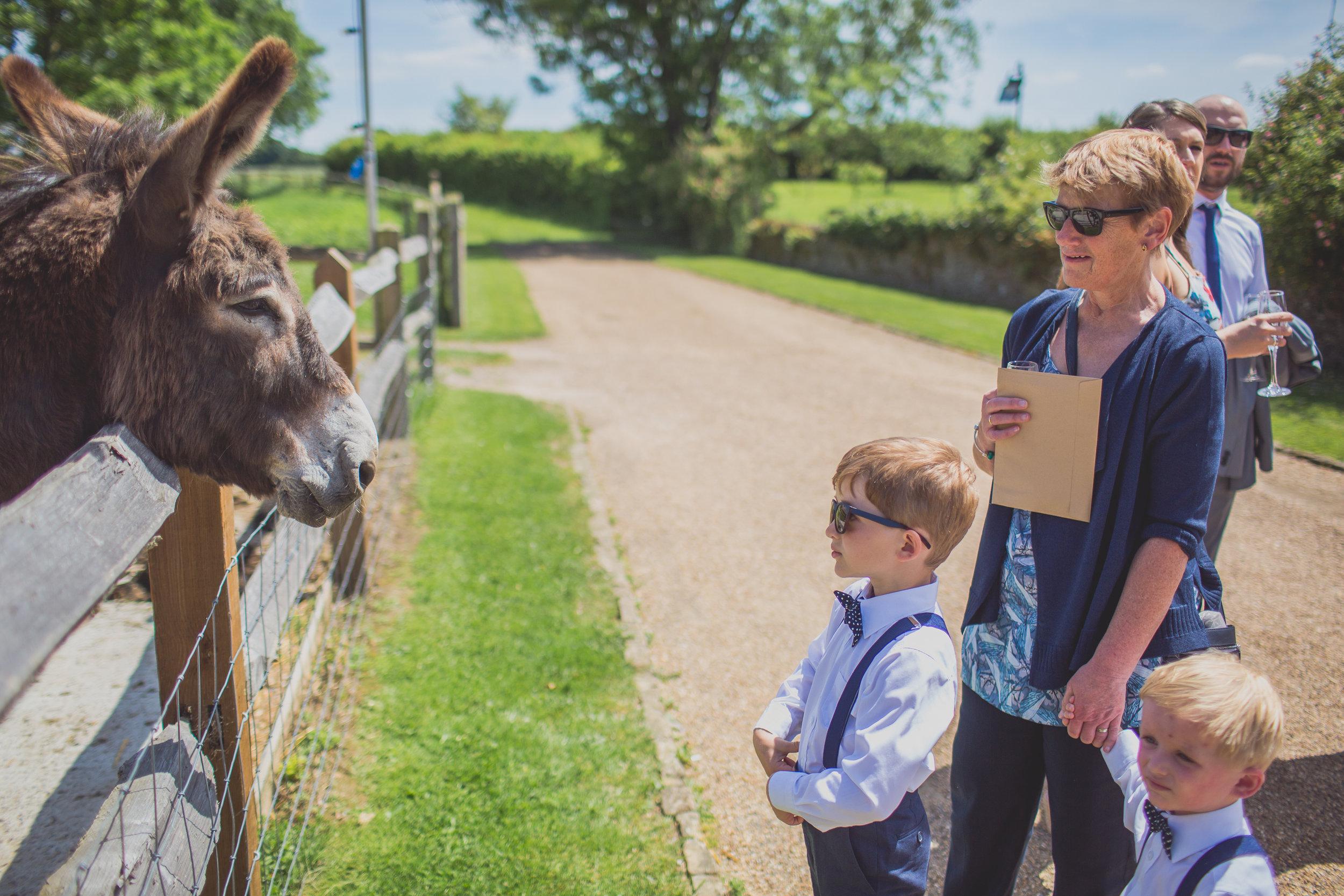 Grittenham Barn female wedding photographers west sussex petworth social-88.jpg