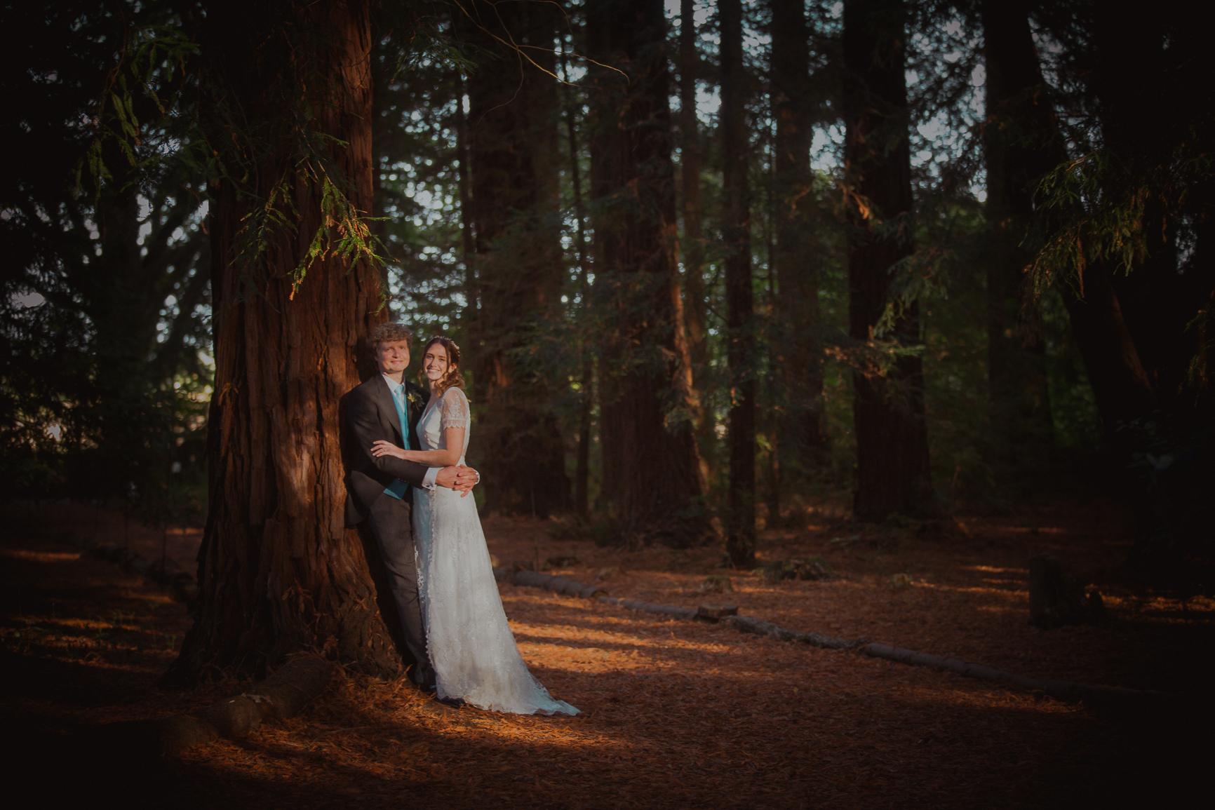 two woods wedding photographer pulborough-1.jpg