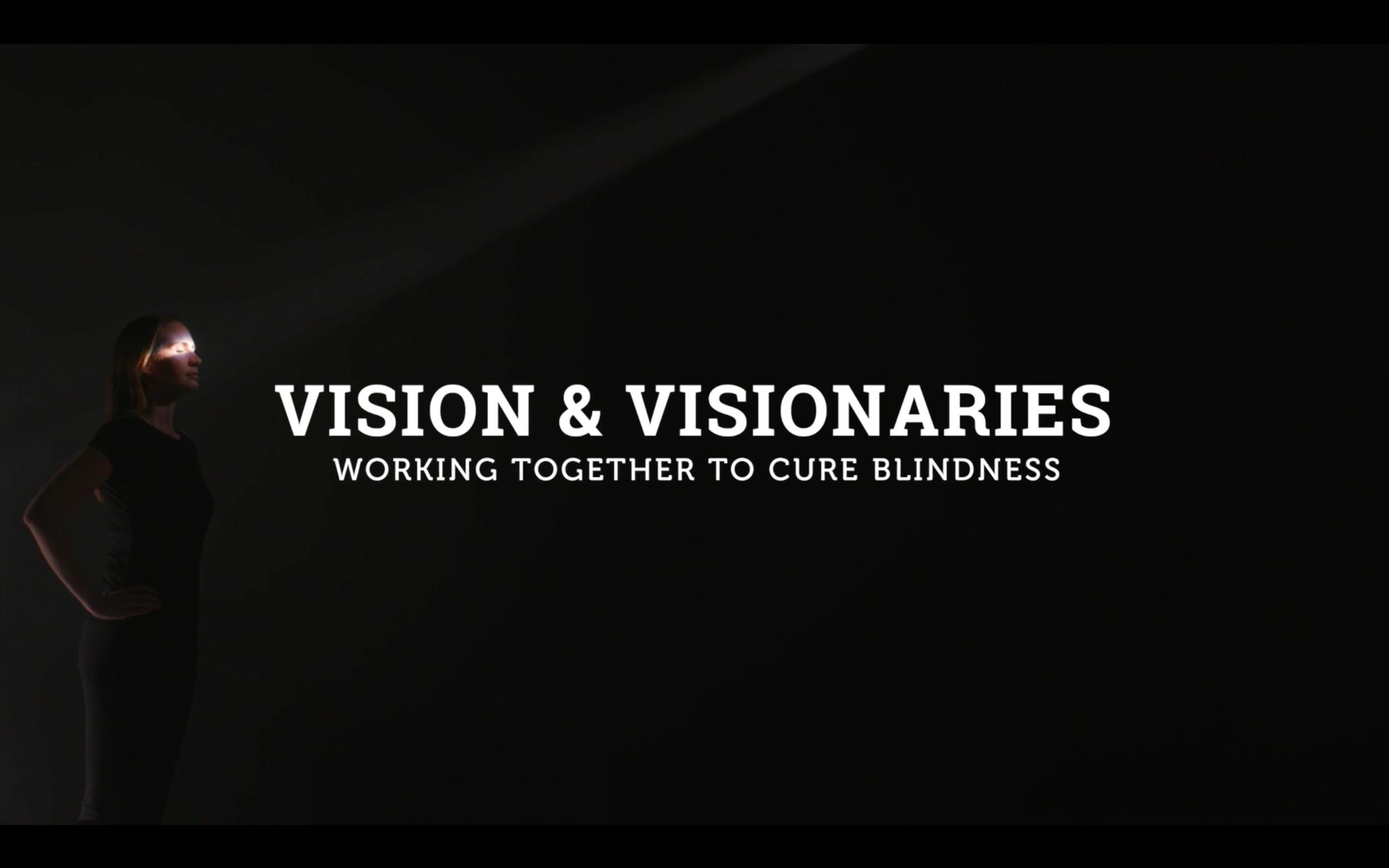 Vision-Visionaries.png