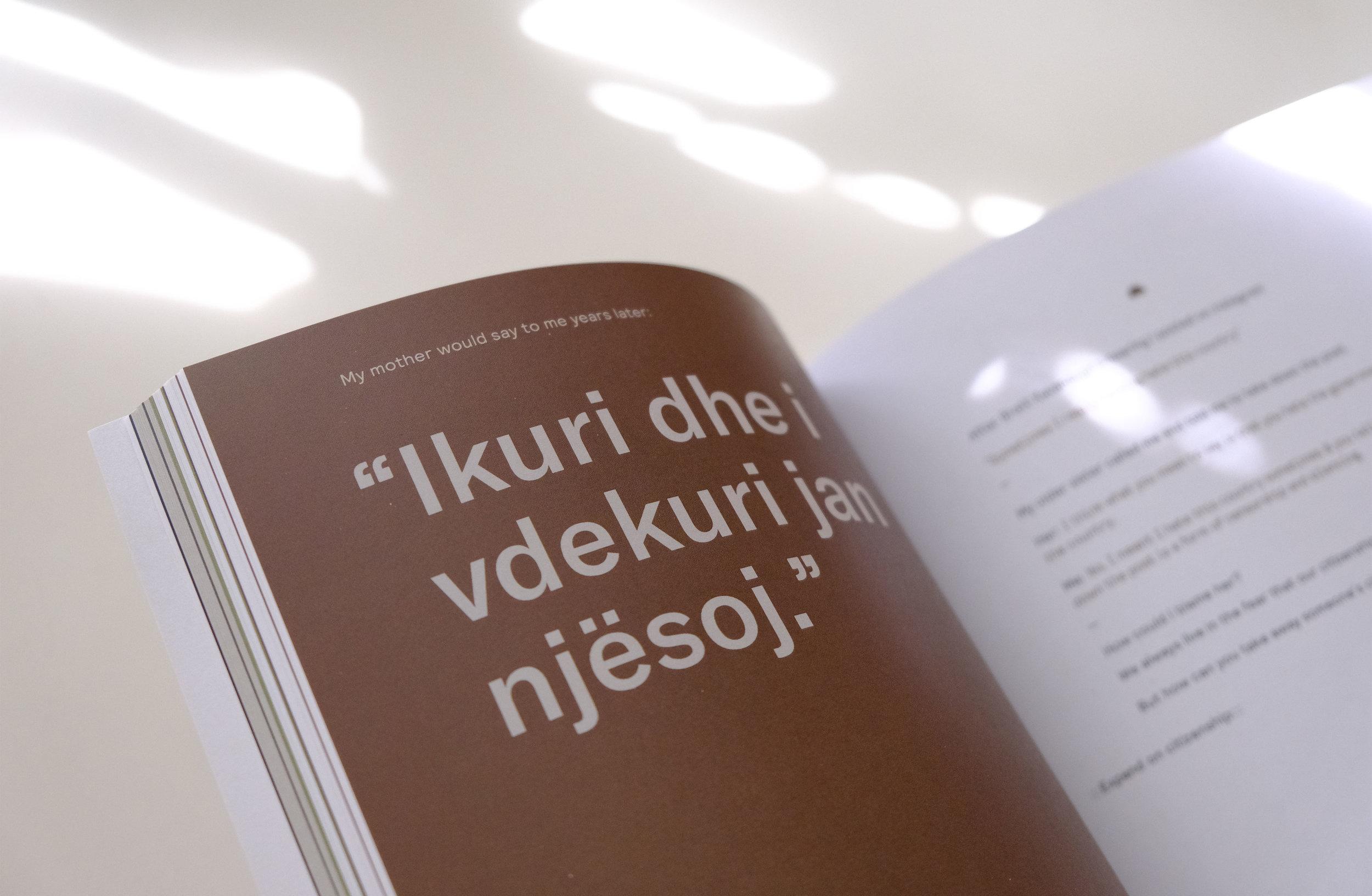 hamerika_book_shots_0012_DSCF0378.jpg