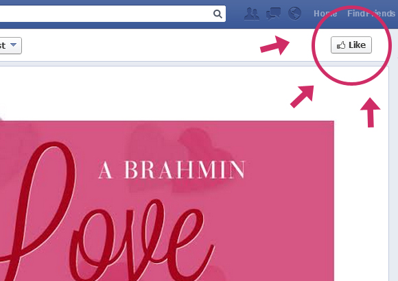 A #Brahmin Love Affair Step 1