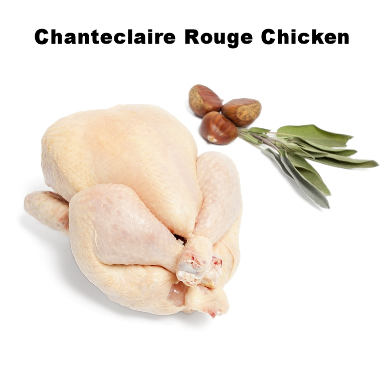 Chanteclaire Rouge Chicken