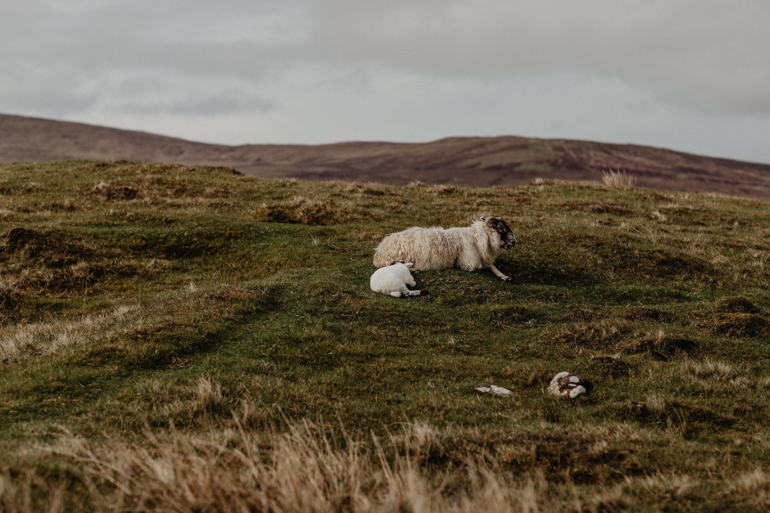 Lapela-photography-Isle-of-Skye-elopement-BTS-39.jpg