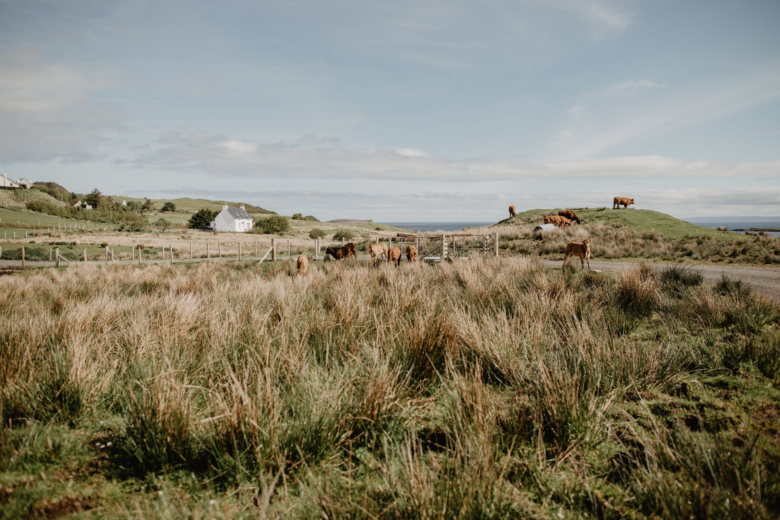 Lapela-photography-Isle-of-Skye-elopement-BTS-64.jpg