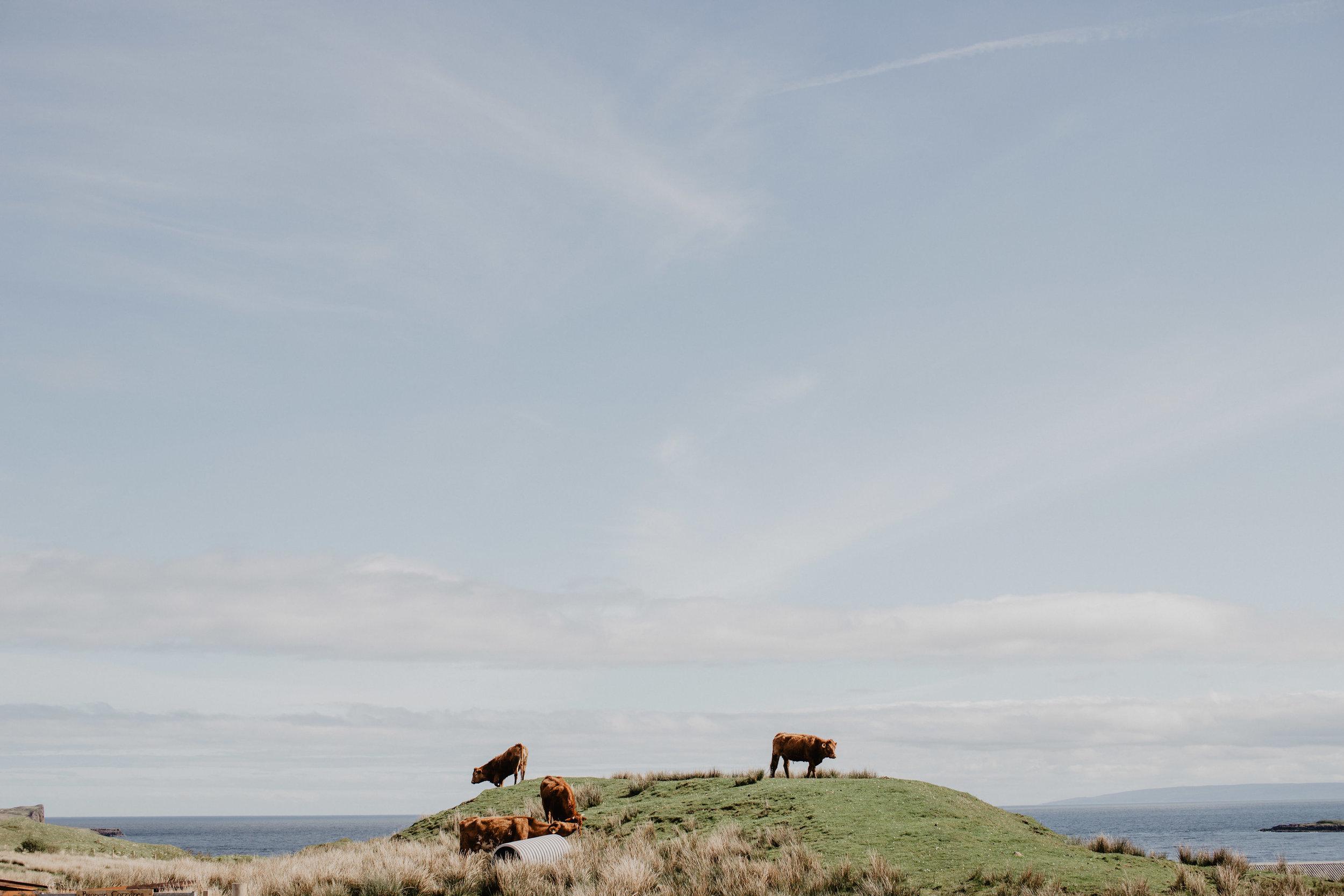 Lapela-photography-Isle-of-Skye-elopement-BTS-62.jpg