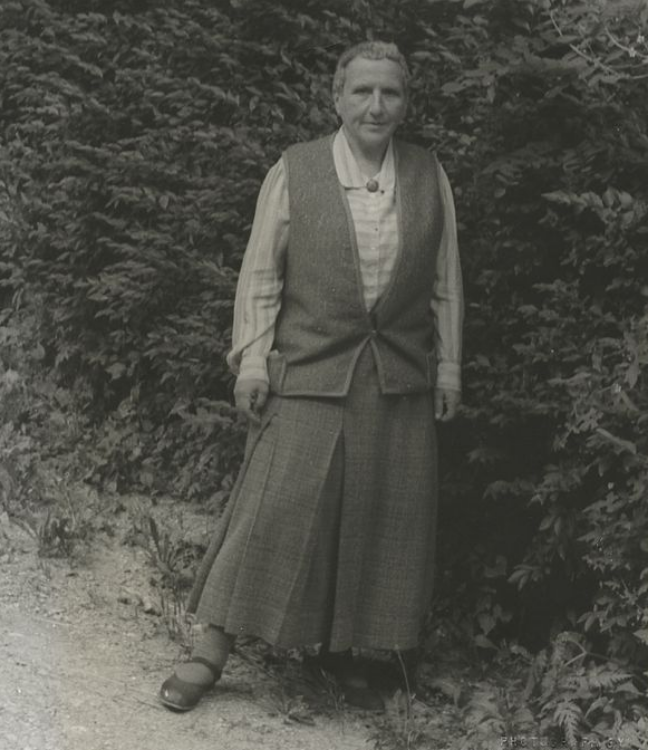 Gertrude Stein.png