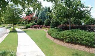 commercial landscaping client