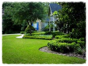 Eye pleasing lawn and landscape