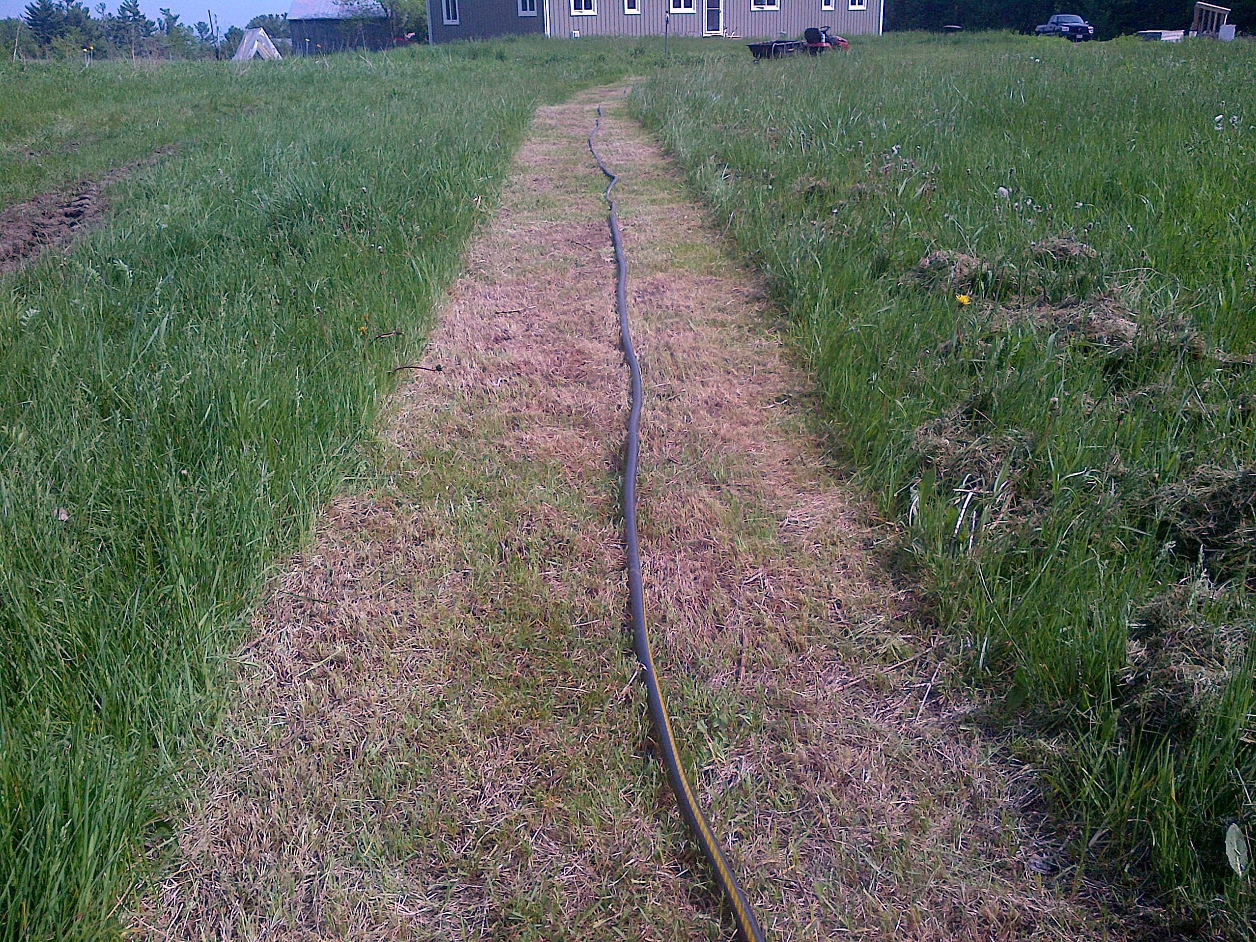 Mowed strip
