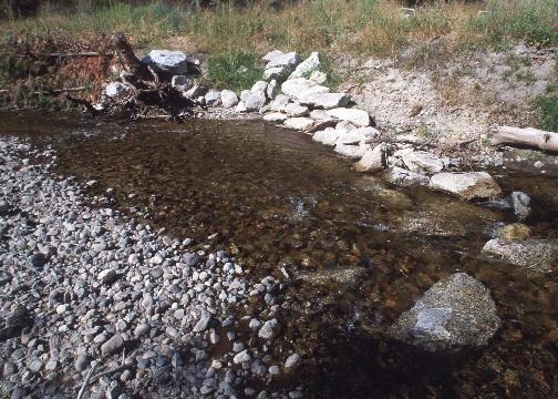 Streambank restoration
