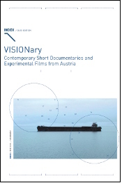 visionary cover.jpg